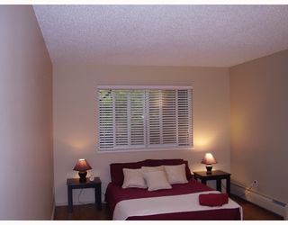 Photo 5: 112 1122 KING ALBERT Avenue in Coquitlam: Central Coquitlam Condo for sale : MLS®# V663844