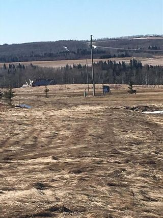 Photo 4: 22 River Ridge Estates: Rural Wetaskiwin County Rural Land/Vacant Lot for sale : MLS®# E4237734