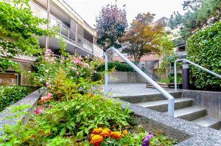 "Photo 18: 330 8460 ACKROYD Road in Richmond: Brighouse Condo for sale in ""Arbouretum"" : MLS®# R2391026"