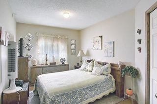 Photo 25: 48 Riverview Mews SE in Calgary: Riverbend Detached for sale : MLS®# A1129355