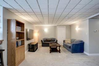 Photo 26: 260 Douglasbank Place SE in Calgary: Douglasdale/Glen Detached for sale : MLS®# A1042919