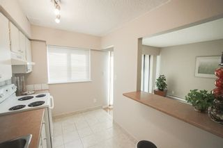 Photo 5: 9 21555 DEWDNEY TRUNK ROAD in Maple Ridge: West Central Townhouse for sale : MLS®# R2296165