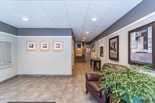 Photo 29: 502 1026 Johnson St in : Vi Downtown Condo for sale (Victoria)  : MLS®# 884670