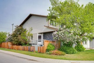 Photo 41: 2839 28 Street SW in Calgary: Killarney/Glengarry Detached for sale : MLS®# A1116843