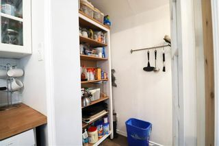 Photo 14: 192 Canora Street in Winnipeg: Wolseley Residential for sale (5B)  : MLS®# 202118276