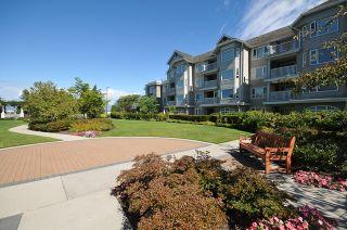 """Photo 12: 234 5888 DOVER Crescent in Richmond: Riverdale RI Condo for sale in """"PELICAN POINTE RIVERFRONT"""" : MLS®# V881174"""