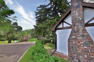 Photo 9: 5712 45 Avenue: Wetaskiwin House for sale : MLS®# E4247203