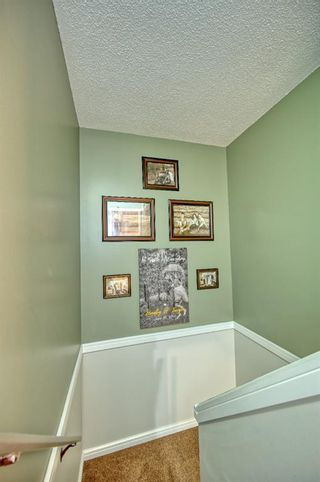 Photo 23: 39 Erin Green Way SE in Calgary: Erin Woods Detached for sale : MLS®# A1118796