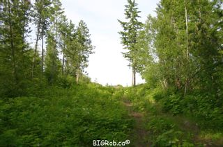 Photo 10: 190 SW Christison Road in Salmon Arm: Gleneden Vacant Land for sale : MLS®# 10118444