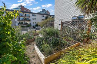 Photo 24: 3 331 Robert St in : VW Victoria West Row/Townhouse for sale (Victoria West)  : MLS®# 883097