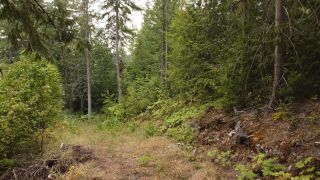 Photo 11: 8655 PROCTER EAST ROAD in Procter: Vacant Land for sale : MLS®# 2460291