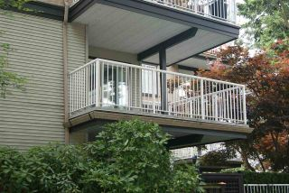 """Photo 10: 206 20288 54 Avenue in Langley: Langley City Condo for sale in """"Cavalier Court"""" : MLS®# R2192367"""