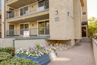 Photo 4: 6 313 13 Avenue SW in Calgary: Beltline Apartment for sale : MLS®# A1141829