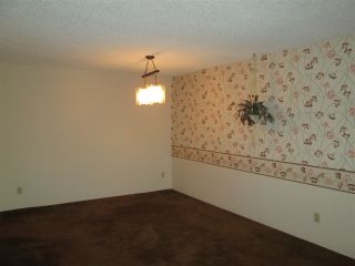 """Photo 5: 314 32910 AMICUS Place in Abbotsford: Central Abbotsford Condo for sale in """"Royal Oaks"""" : MLS®# R2122467"""