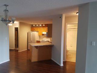 Photo 11: 201 9640 105 Street in Edmonton: Zone 12 Condo for sale : MLS®# E4264251