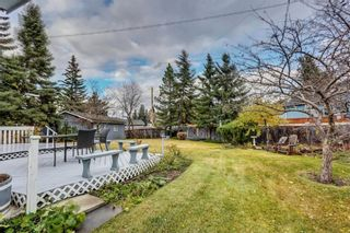 Photo 37: 132 LAKE ADAMS Green SE in Calgary: Lake Bonavista House for sale : MLS®# C4142300