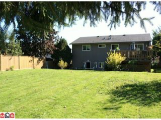 Photo 8: 27021 27B Avenue in Langley: Aldergrove Langley House for sale : MLS®# F1024790