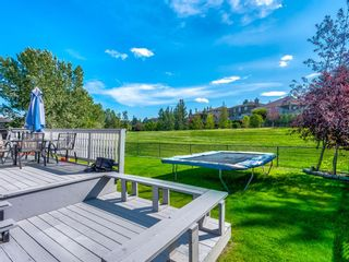 Photo 44: 216 MT COPPER Park SE in Calgary: McKenzie Lake Detached for sale : MLS®# A1025995