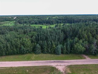 Photo 3: Pinebrook Block 1 Lot 2: Rural Thorhild County Rural Land/Vacant Lot for sale : MLS®# E4171871