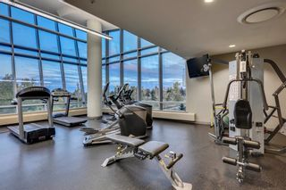 Photo 38: 901 77 Spruce Place SW in Calgary: Spruce Cliff Apartment for sale : MLS®# A1104367