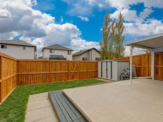 Photo 26: 415 STONEGATE Rise NW: Airdrie Semi Detached for sale : MLS®# C4299207