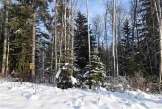 "Photo 11: 1 3000 DAHLIE Road in Smithers: Smithers - Rural Land for sale in ""Mountain Gateway Estates"" (Smithers And Area (Zone 54))  : MLS®# R2280132"