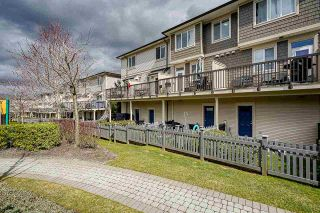 """Photo 30: 53 7938 209 Street in Langley: Willoughby Heights Townhouse for sale in """"Red Maple Park"""" : MLS®# R2559929"""