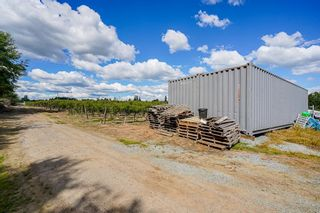Photo 10: 21.44AC 240 STREET in Langley: Langley City Agri-Business for sale : MLS®# C8038637