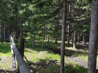 Photo 40: 5224 Township Road 292: Rural Mountain View County Detached for sale : MLS®# A1060781
