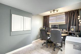 Photo 26: 101 Silverado Plains Close SW in Calgary: Silverado Detached for sale : MLS®# A1068020