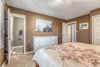 Photo 17: 11 Range Way NW in Calgary: Ranchlands Detached for sale : MLS®# A1088118