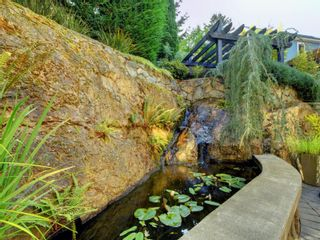Photo 30: 2003 Runnymede Ave in : Vi Fairfield East House for sale (Victoria)  : MLS®# 853915