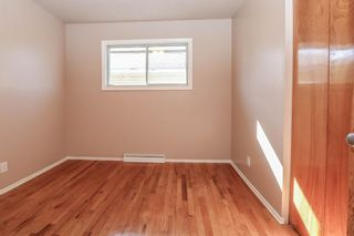 Photo 12: 2427 47 Street SE in Calgary: Forest Lawn Detached for sale : MLS®# A1150911