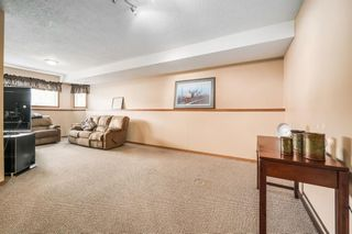 Photo 23: 619 Hendricks Drive: Irricana Detached for sale : MLS®# A1110320