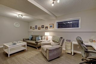 Photo 23: 131 MT APEX Green SE in Calgary: McKenzie Lake Detached for sale : MLS®# C4275506