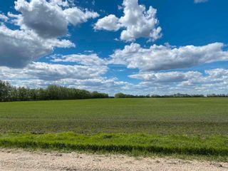 Photo 6: NE 34-49-27-W4 none: Rural Leduc County Rural Land/Vacant Lot for sale : MLS®# E4246771