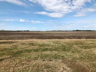 Photo 18: RR 255 & HWY 37: Rural Sturgeon County Rural Land/Vacant Lot for sale : MLS®# E4244134