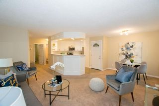 Photo 10: 246 Allan Crescent SE in Calgary: Acadia Detached for sale : MLS®# A1062297
