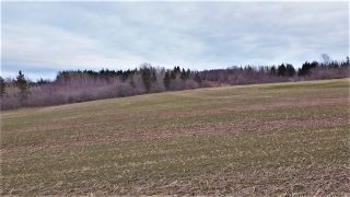 Photo 2: Lot Mountville Road in Mountville: 108-Rural Pictou County Vacant Land for sale (Northern Region)  : MLS®# 202109746