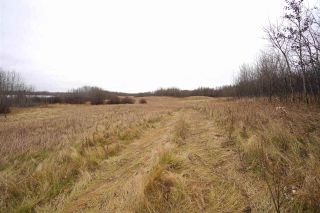 Photo 14: Range Road 233 TWP 520 NW: Rural Strathcona County Rural Land/Vacant Lot for sale : MLS®# E4179287