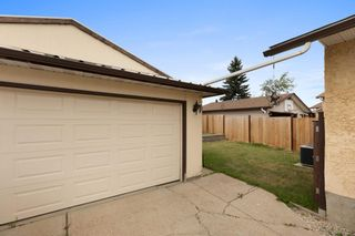 Photo 24: 10220 169 Avenue in Edmonton: Zone 27 House for sale : MLS®# E4257777