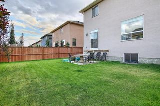 Photo 47: 112 McIvor Terrace: Chestermere Detached for sale : MLS®# A1140935