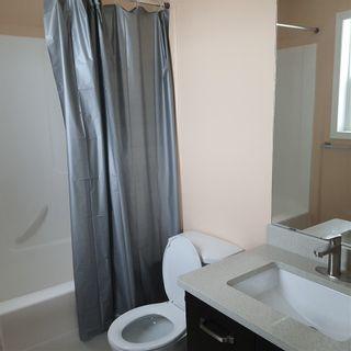 Photo 13: 1812 37C Avenue in Edmonton: Zone 30 House for sale : MLS®# E4225424