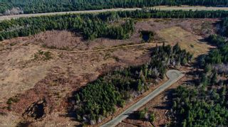 Photo 6: Lot 8 Blacktail Rd in : PQ Qualicum North Land for sale (Parksville/Qualicum)  : MLS®# 870790