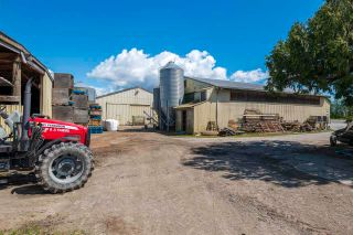 Photo 6: 17731 WESTMINSTER Highway in Richmond: East Richmond Agri-Business for sale : MLS®# C8038030
