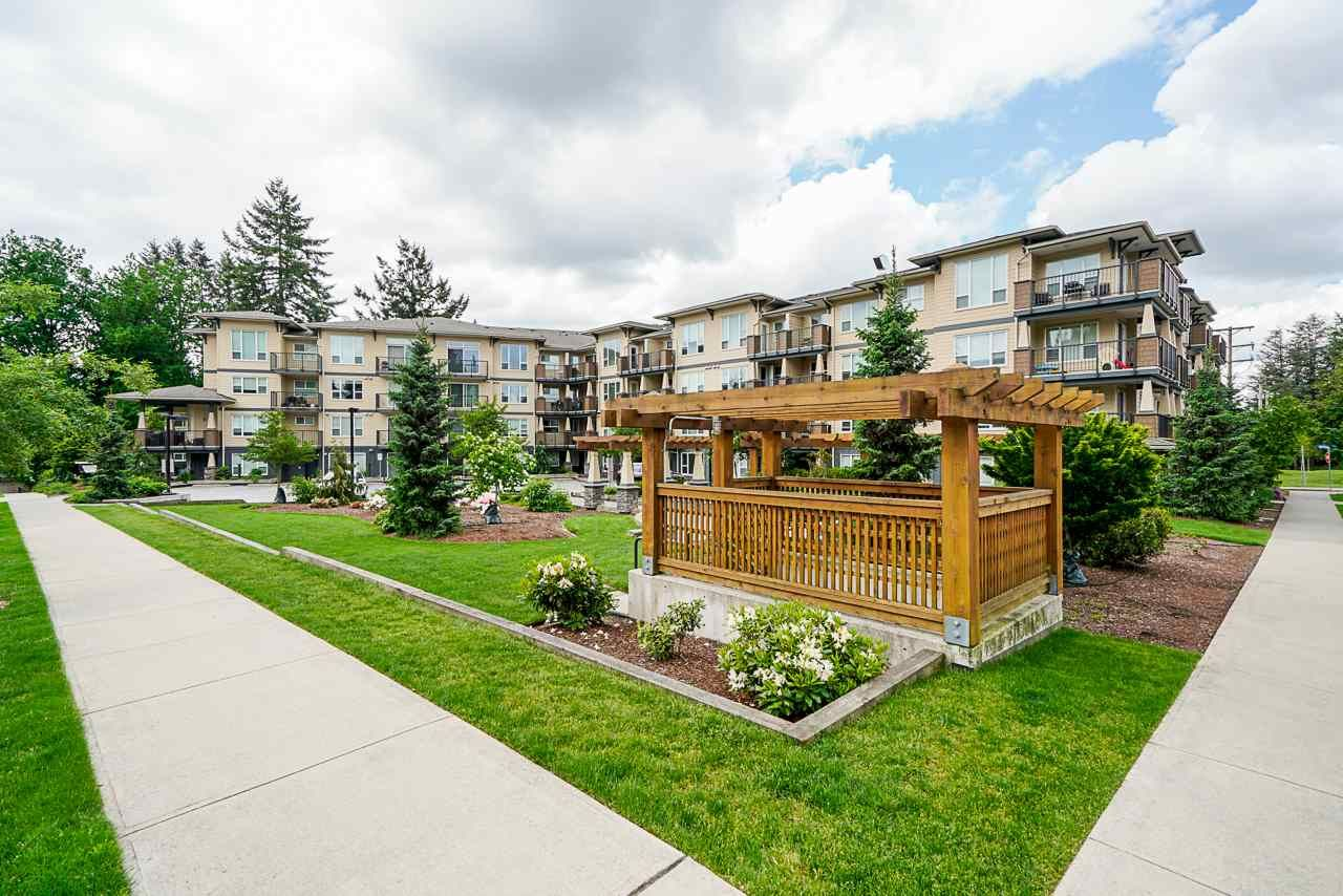 "Main Photo: 218 2565 CAMPBELL Avenue in Abbotsford: Central Abbotsford Condo for sale in ""Abacus"" : MLS®# R2456561"