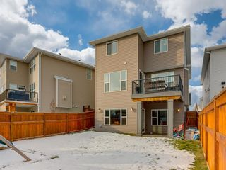 Photo 47: 61 Auburn Springs Place SE in Calgary: Auburn Bay Detached for sale : MLS®# A1050585