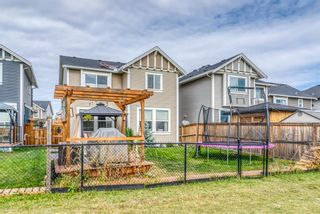 Photo 43: 1837 Reunion Terrace NW: Airdrie Detached for sale : MLS®# A1149599