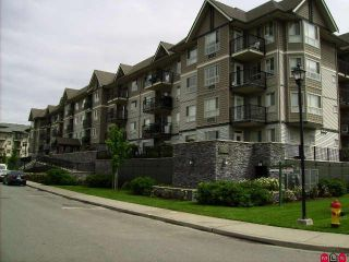 Photo 1: 400 9000 BIRCH Street in Chilliwack: Chilliwack W Young-Well Condo for sale : MLS®# H1002037