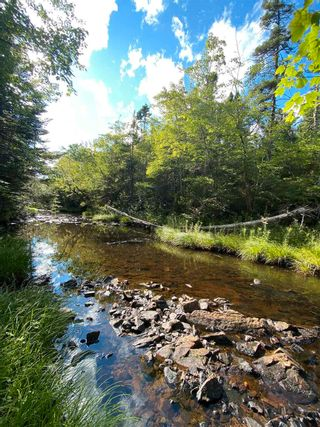 Photo 9: Lot Highway 4 False Bay Brook in River Bourgeois: 305-Richmond County / St. Peters & Area Vacant Land for sale (Highland Region)  : MLS®# 202123291